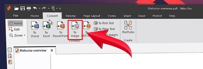 Nitro Pro Convert To Image Features