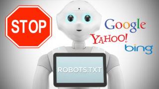 Apa Itu Robots.txt dan Meta Robots? Pengertian Robots.txt