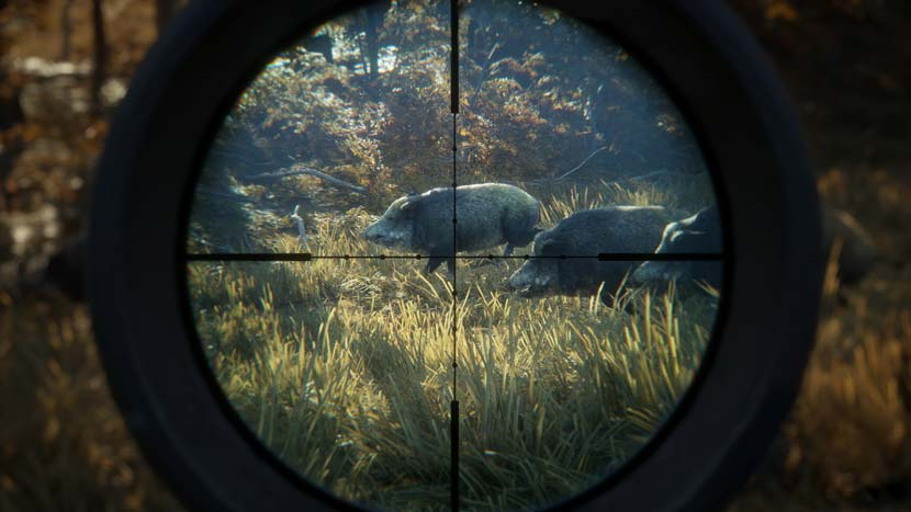 Download Game The Hunter Call Of The Wild Gratis