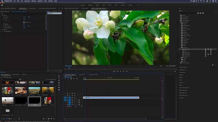 Premiere Pro CC 2020 MacOS Free Download Catalina